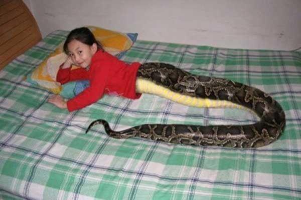 Fille avec des serpents