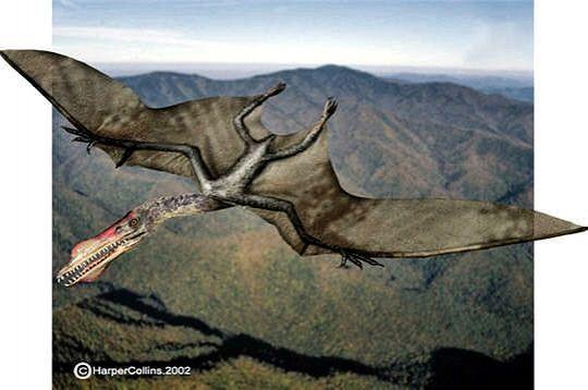 Dinosaures - Dinosaur volant ...
