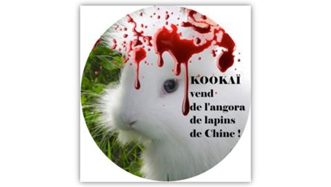 De l'angora de lapin de Chine chez Kookaï