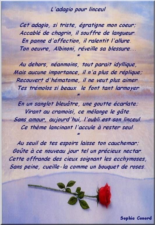 amour rencontres net