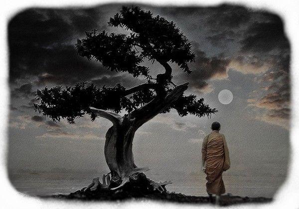 meditation - Page 4 B89ddf8b