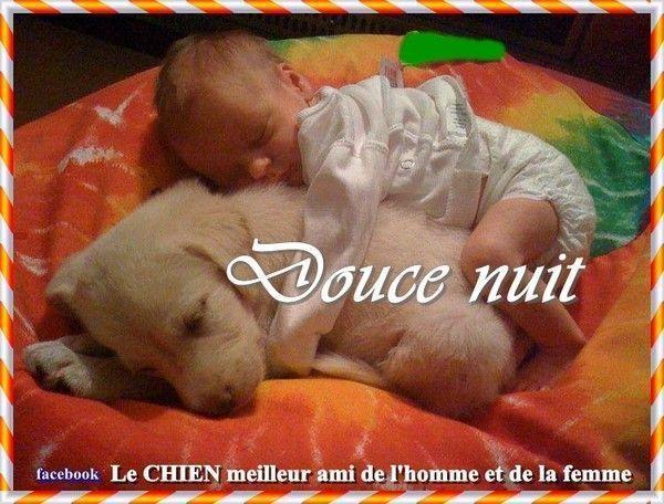 Bonjour, bonsoir..... - Page 17 C9b6111e