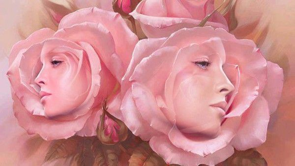 fond ecran fleurs - page 5
