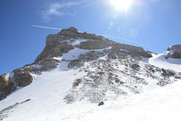 pin paysages montagne fond - photo #42