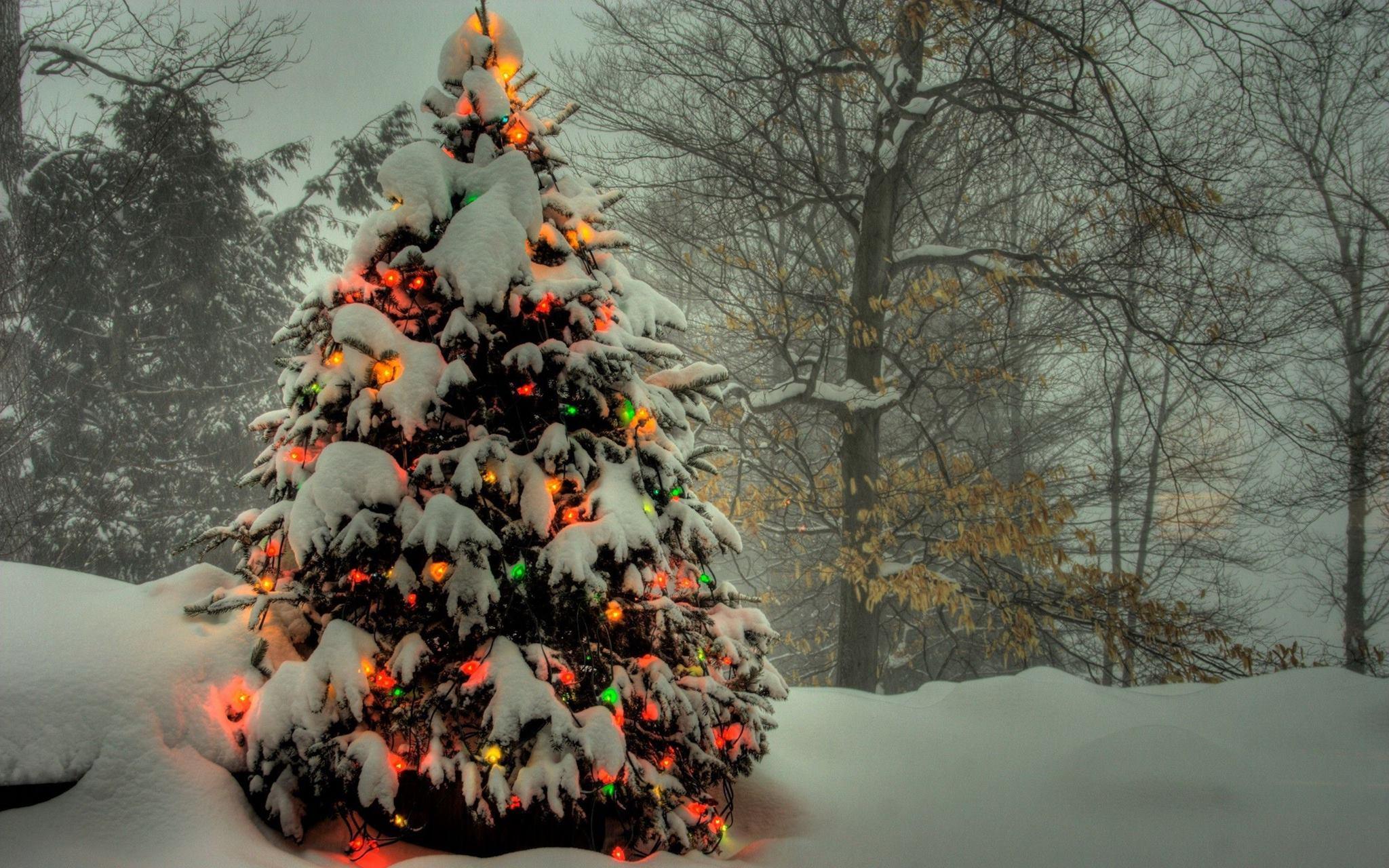 Fond Ecran Noel