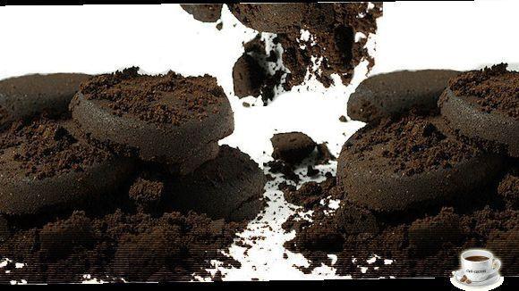 A savoir page 9 - Marc de cafe fourmis ...